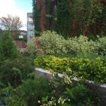 Благоустройство территории малые архитектурные формы многоуровневое озеленение пример РостАрт 0011