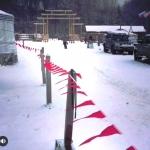 Изготовление флажной ленты на заказ для ограждения однотонная гирлянды из флажков для мероприятия РостАрт Москва 2018 15822