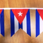 Гирлянды из флажков из ткани печатьо на ткани брендирование BACARDI печать флагов стран РостАрт Москва 2018 12096