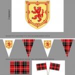 Изготовление флажной ленты на заказ для презентации гирлянда из флажков настольные флажки РостАрт Москва 2017 8153