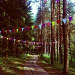 Изготовление гирлянд флажков на заказ определенных цветов для Яндекс Пикник РостАрт Москва 6010