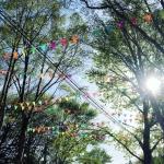 Гирланды из флажков флажная лента из ткани из флажков Парк культуры и отдыха Южно-Сахалинск РостАрт Москва 2018