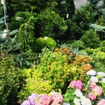 Поставка цветов благоустройство малые архитектурные формы цветочные композиции в вазонах Москва 2018 100