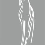 Плоттерная резка пленки для пескоструйной обработки зеркала спальня РостАрт 065
