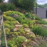 Ладшафтный дизайн создание рокария работы по озеленению поставка цветов пример РостАрт 0025