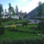 Благоустройство озеление ландшафтный дизайн поставка цветов Москва 2017 107