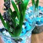 Поставка растений для офиса декорирование офисного пространства цветами в вазах кашпо РостАрт Москва 2018