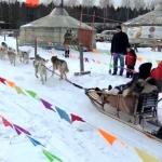 Гирлянда из флажков флажная лента из ткани флажки для ограждения для мероприятия для лыжни РостАрт Москва 2020 31044