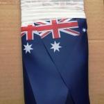 Изготовление гирлянд из флажков флажной ленты из ткани печать на ткани гирлянда из флагов РостАрт 2019 28965