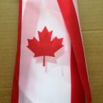 Изготовление гирлянд из флажков флажной ленты из ткани печать на ткани гирлянда из флагов Канада РостАрт 2019