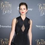 Пресс-волл для кинопремьеры Красавица и Чудовище Эмма Уотсон пример РостАрт 2017