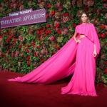 Пресс-волл фотозона церемония Evening Standard Theatre Awards Елена Перминова Лондон 2018